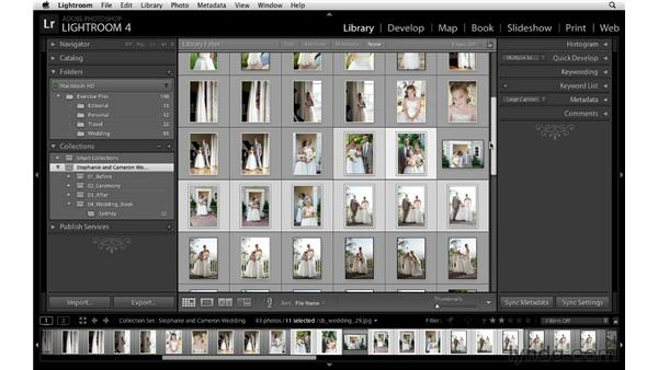 Organizing collections based on subject matter: Lightroom Workflow Strategies
