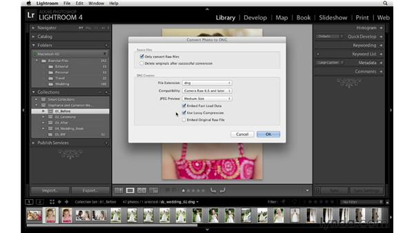 Compressing and archiving the images: Lightroom Workflow Strategies