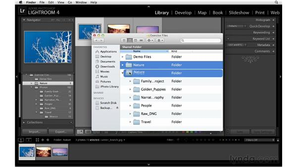 : Lightroom 4 Catalogs in Depth