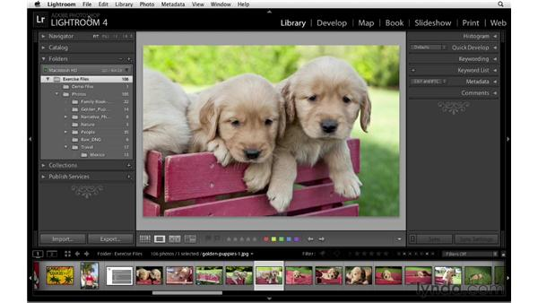 Consolidating catalogs: Lightroom 4 Catalogs in Depth