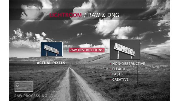 Introducing raw and DNG processing: Lightroom 4 Catalogs in Depth