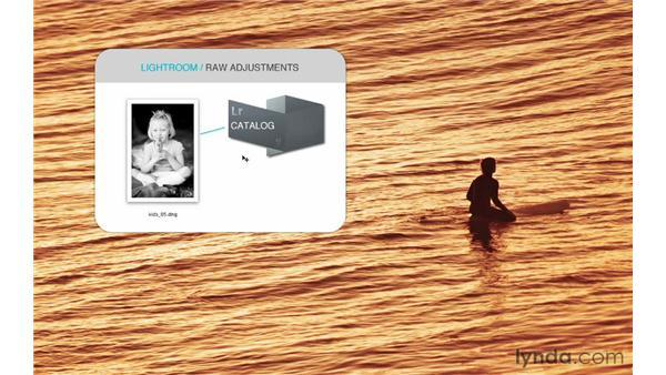 Understanding how Lightroom saves raw adjustments: Lightroom 4 Catalogs in Depth
