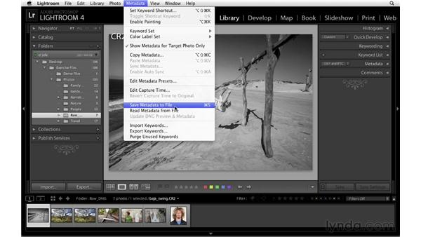 Saving adjustments to raw files : Lightroom 4 Catalogs in Depth