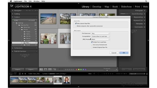 Archiving a photo as a DNG with lossy compression: Lightroom 4 Catalogs in Depth
