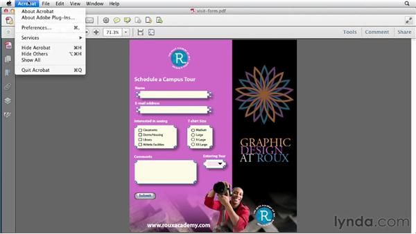 Testing the form in Acrobat: InDesign CS6 New Features