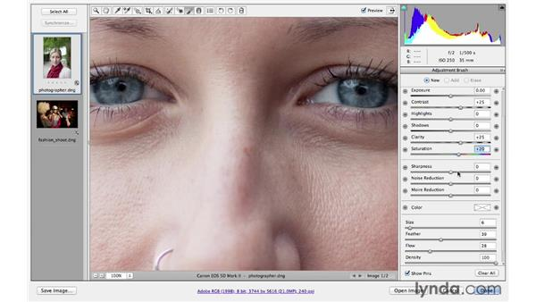 Utilizing the new Adjustment Brush features: Photoshop CS6 for Photographers New Features