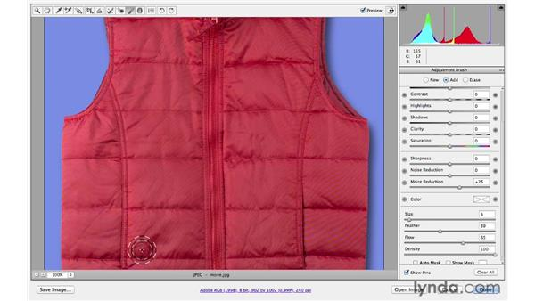 Painting away moiré patterns : Photoshop CS6 for Photographers New Features