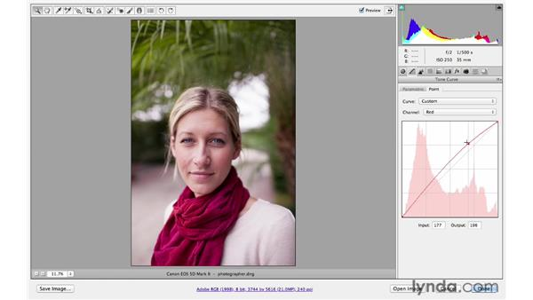Making precise adjustments with the Point Tone Curve panel: Photoshop CS6 for Photographers New Features