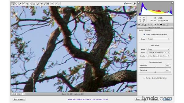 Using lens corrections to remove color fringing: Photoshop CS6 for Photographers New Features