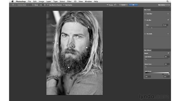 Working with Iris Blur: Photoshop CS6 for Photographers New Features