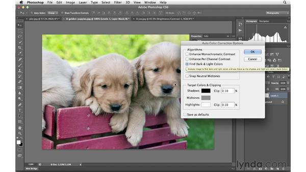 Making automatic adjustments: Photoshop CS6 for Photographers New Features