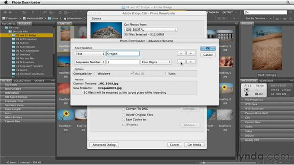 Getting photos from a camera: Photoshop CS6 Essential Training