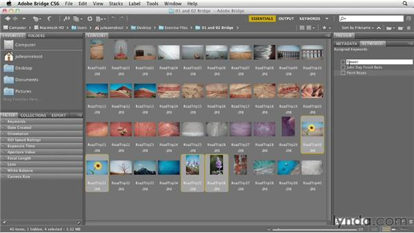 Creating and applying keywords to images: Photoshop CS6 Essential Training