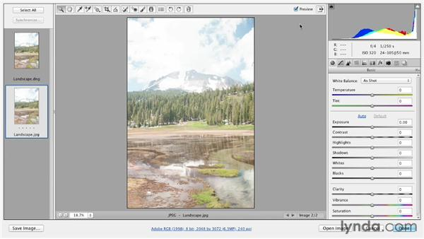 Comparing RAW and JPEG files: Photoshop CS6 Essential Training