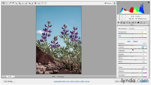 Touring the Camera Raw interface: Photoshop CS6 Essential Training