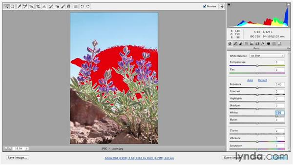 Toggling onscreen shadow and highlight clipping warnings: Photoshop CS6 Essential Training