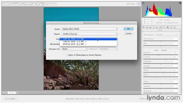 Choosing output settings: Photoshop CS6 Essential Training