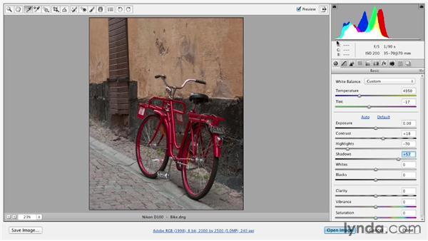 Making an average photo great: Photoshop CS6 Essential Training
