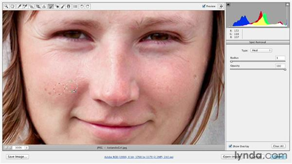 Retouching blemishes with the Spot Removal tool: Photoshop CS6 Essential Training