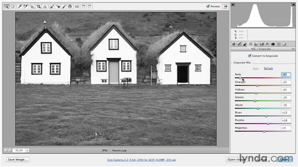 Converting to black and white: Photoshop CS6 Essential Training