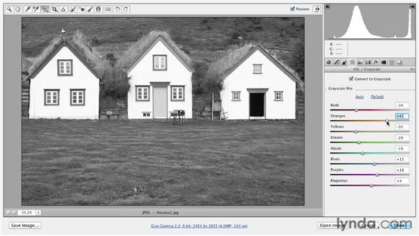 Editing images directly with the Targeted Adjustment tool: Photoshop CS6 Essential Training