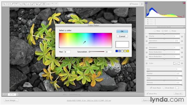 Creating selective color effects with the Adjustment Brush: Photoshop CS6 Essential Training