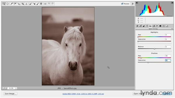Using sepia and split-tone effects: Photoshop CS6 Essential Training