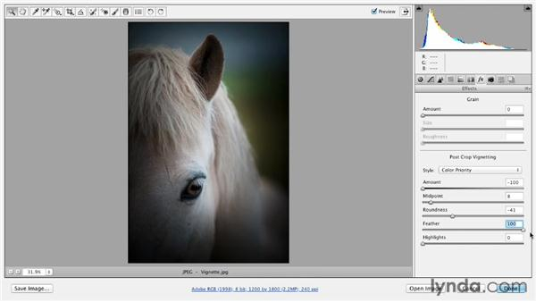 Adding vignettes and border effects: Photoshop CS6 Essential Training