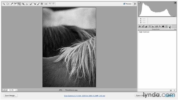 Saving variations within a single file with the Snapshot command: Photoshop CS6 Essential Training