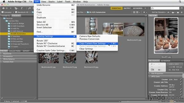 Copying and pasting settings across files: Photoshop CS6 Essential Training