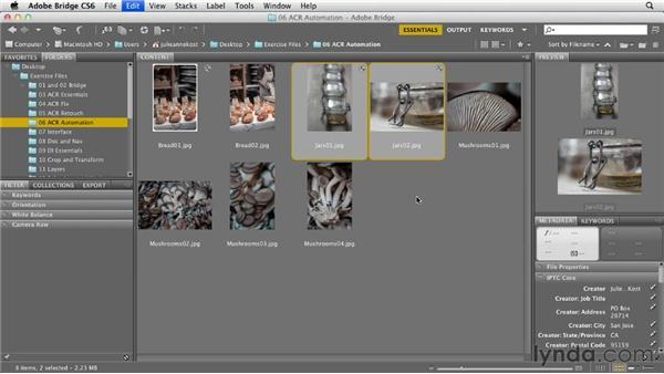 Processing multiple files in Camera Raw: Photoshop CS6 Essential Training