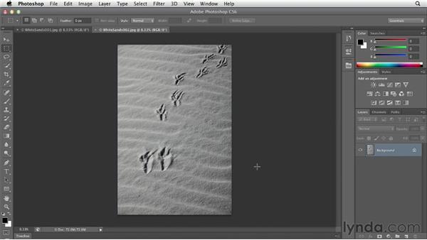 Customizing the Mini Bridge panel: Photoshop CS6 Essential Training