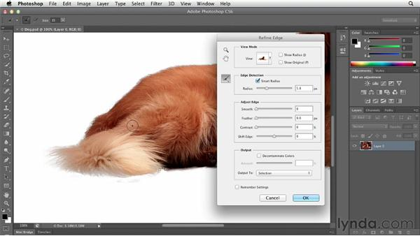 Selecting soft-edged objects using Refine Edge: Photoshop CS6 Essential Training