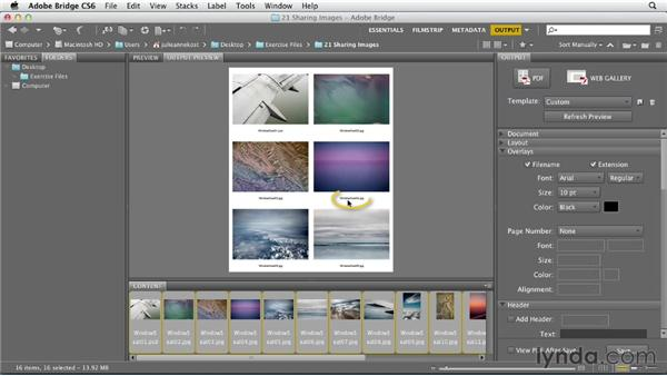Using the Output workspace in Bridge: Photoshop CS6 Essential Training
