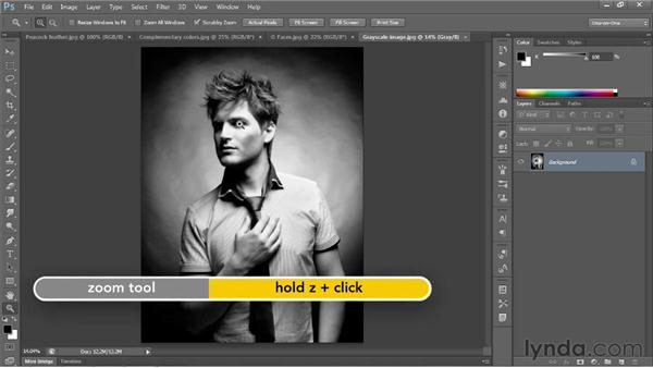 Zooming continuously: Photoshop CS6 One-on-One: Fundamentals