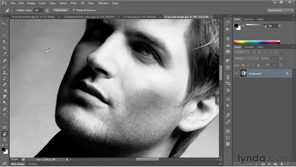 Rotating and resetting the view: Photoshop CS6 One-on-One: Fundamentals