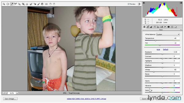 Correcting color cast in Camera Raw: Photoshop CS6 One-on-One: Fundamentals