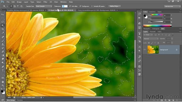 Magic Wand and Grow: Photoshop CS6 One-on-One: Fundamentals