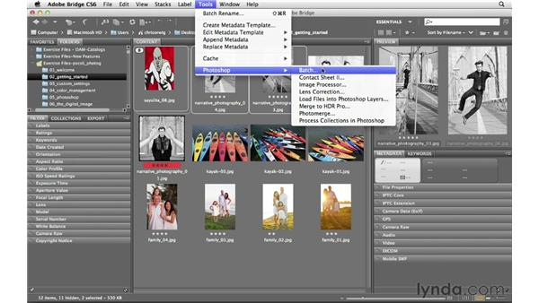 Accessing the Photoshop tools from within Bridge: Photoshop CS6 for Photographers
