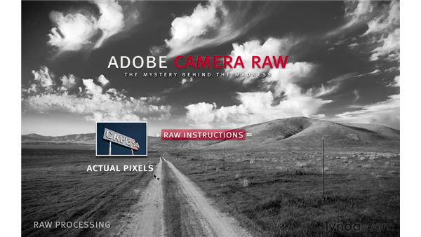 What is Camera Raw?: Photoshop CS6 for Photographers