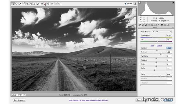 Creating dramatic black-and-white conversions: Photoshop CS6 for Photographers