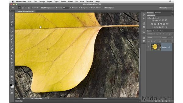 Selecting with the Magic Wand tool: Photoshop CS6 for Photographers