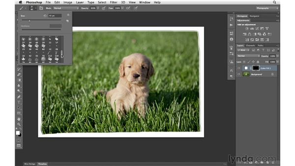Painting custom border effects: Photoshop CS6 for Photographers