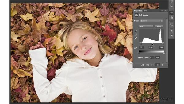 Working with auto levels : Photoshop CS6 for Photographers