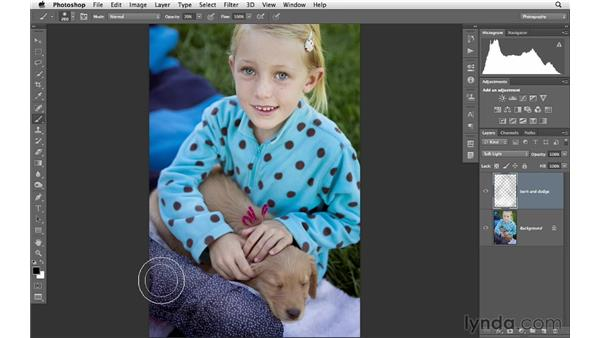 Burning and dodging with the Brush and Gradient tools: Photoshop CS6 for Photographers