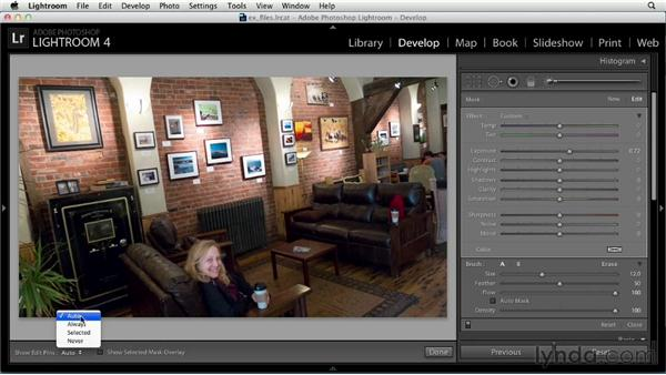 Making local adjustments with the Adjustment Brush: Up and Running with Lightroom 4
