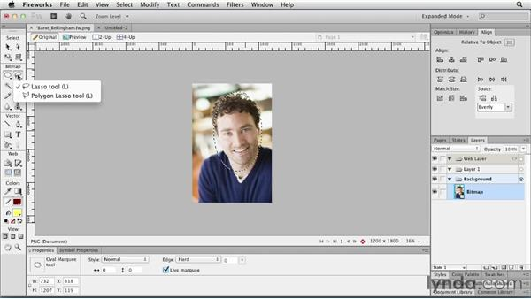 Working with bitmaps: Fireworks CS6 Essential Training