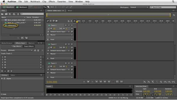 Importing video files: Audition CS6 Essential Training