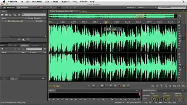 Copying, cutting, and pasting: Audition CS6 Essential Training