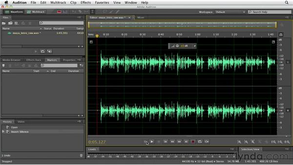 Generating silence: Audition CS6 Essential Training